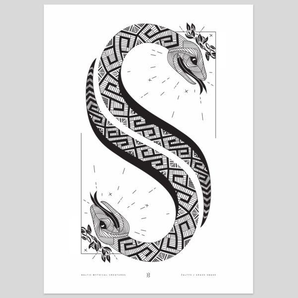 baltic mythical creatures - grass snake / žaltys
